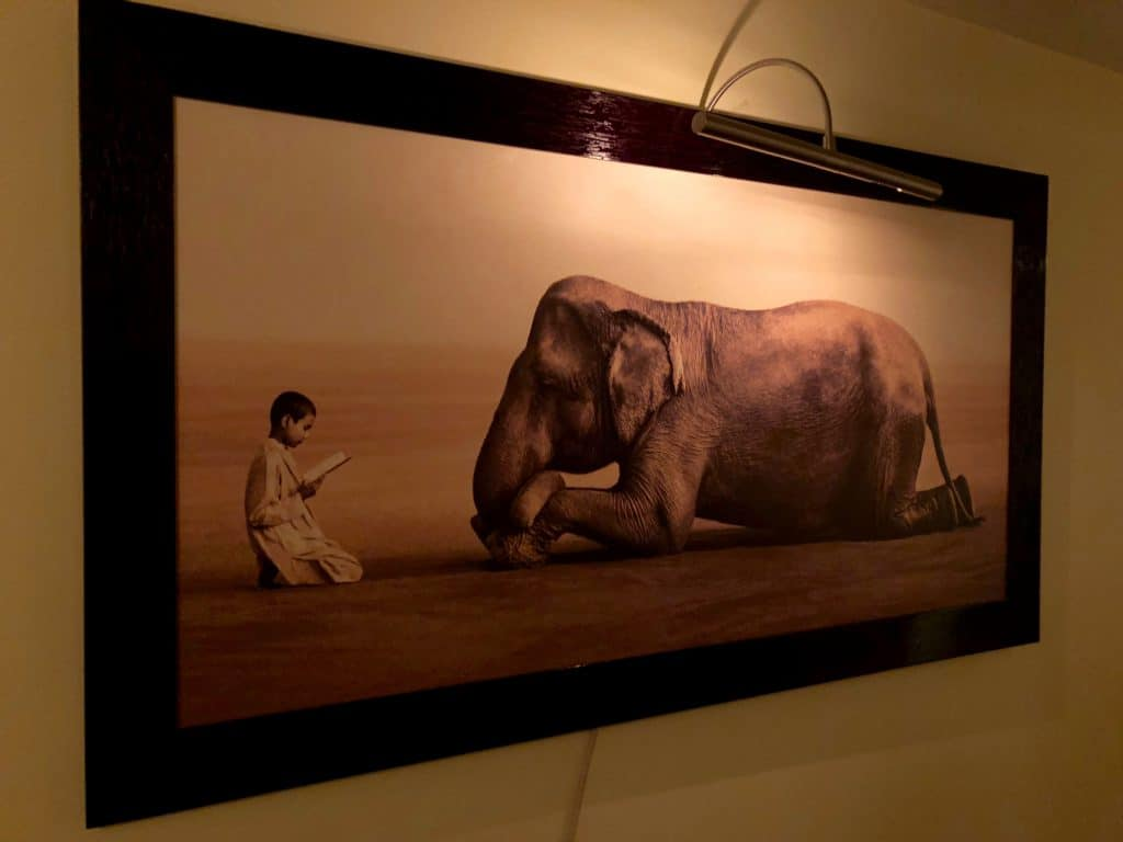 Wall art of a boy reading to an elephant. At Ohm Spa New York